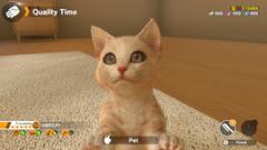 Little Friends: Dogs & Cats выйдет на Nintendo Switch этой весной