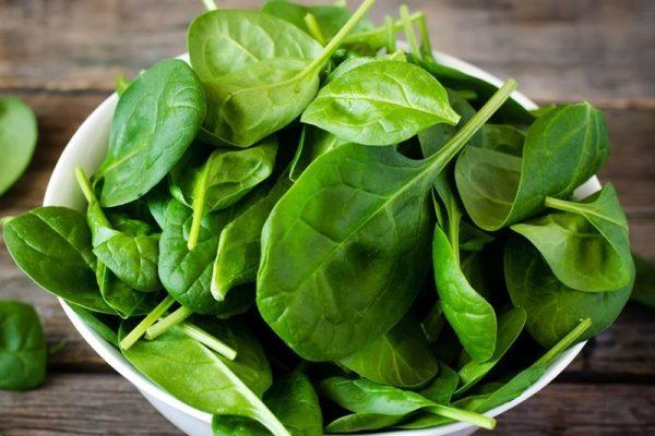 Как листья шпината могут в будущем помочь людям с заболеваниями сердца
